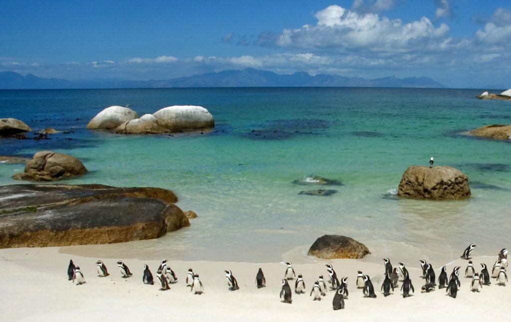 Пляжный отдых в Африке