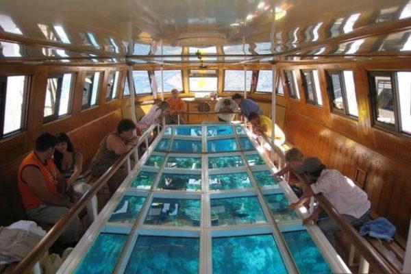 акваскоп