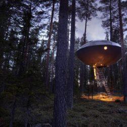 Treehotel отель