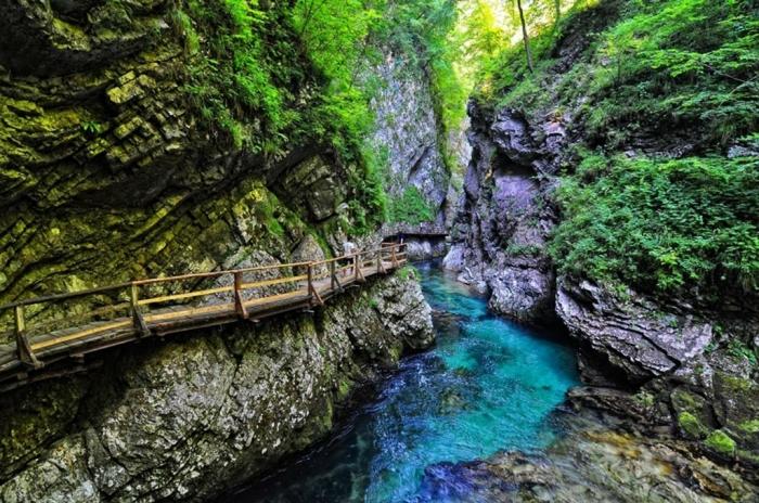 8 лучших мест в Словении, которые вы должны увидеть Ущелье Винтгар