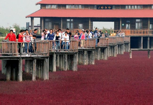 красный пляж в Китае2